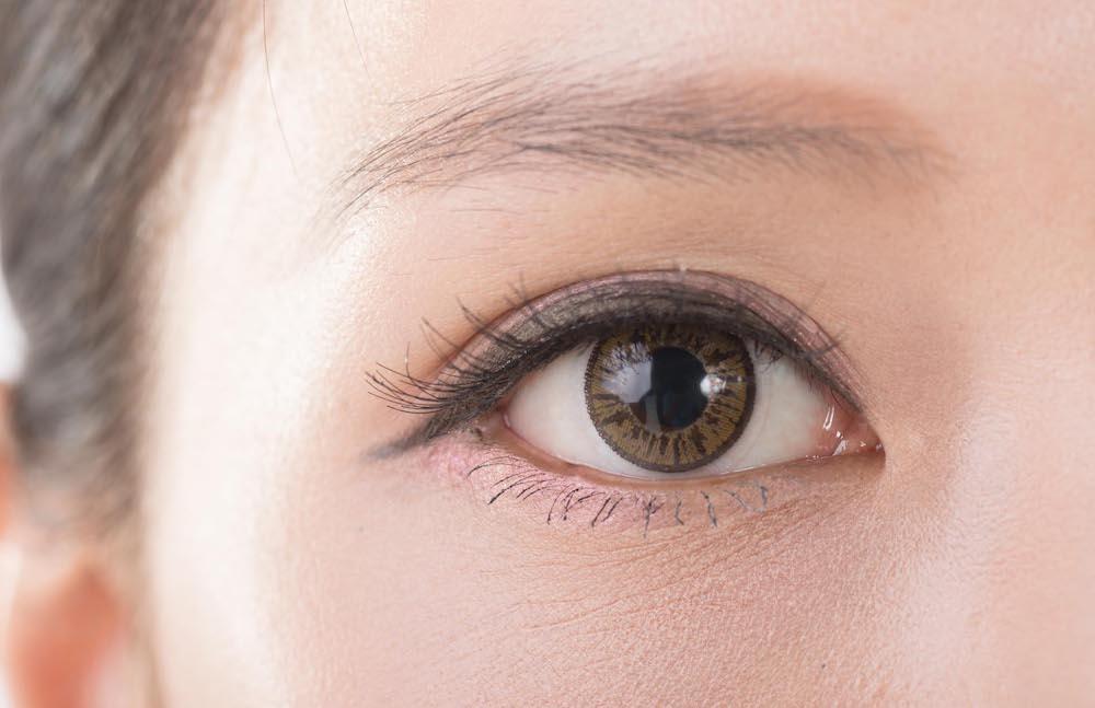 vai trò của mí mắt