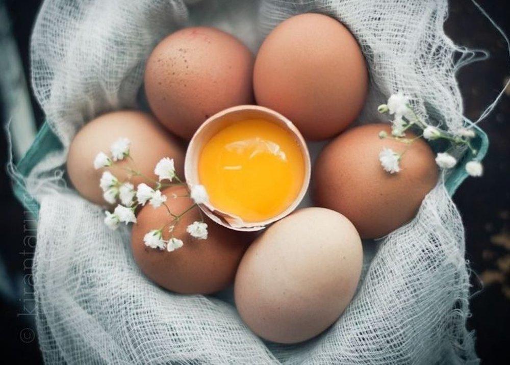 lưu ý với trứng gà