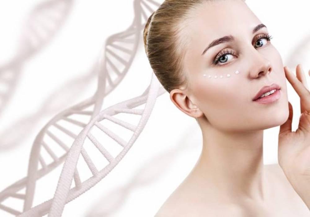 cấy tế bào gốc