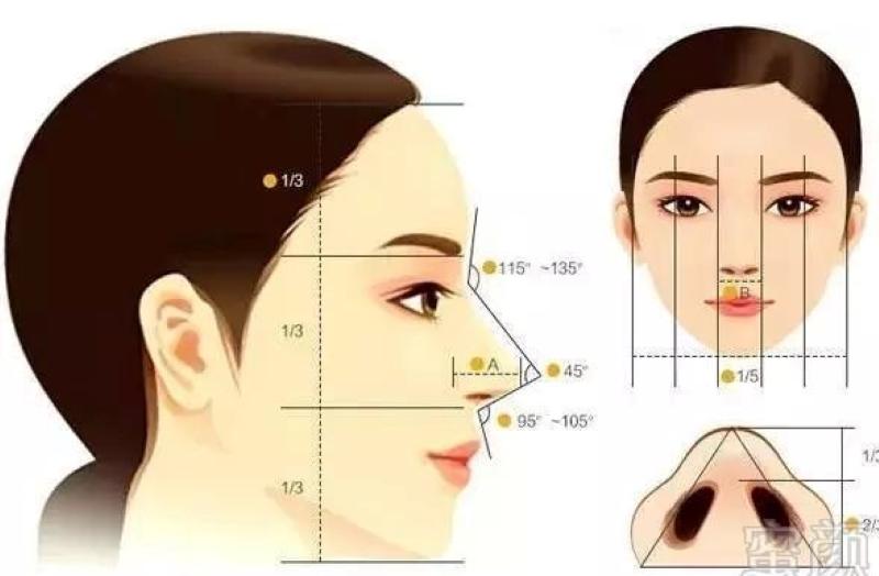 mũi tỉ lệ vàng